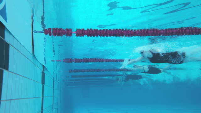 stockvideo's en b-roll-footage met underwater view of female swimmers reaching finish at freestyle competition - binnenbad
