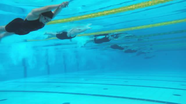 Underwater view of female swimming competitors' start dive