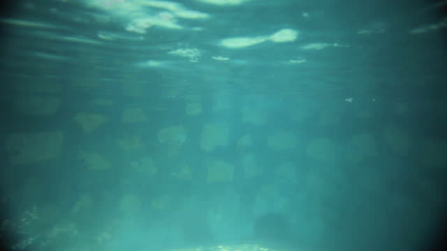 WS Underwater view of girl  (14-15) jumping in pool, Izamal, Yucatan, Mexico