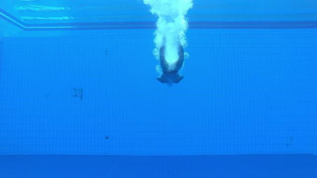 vídeos de stock e filmes b-roll de ld underwater view of male diving athlete landing in the pool - nadar