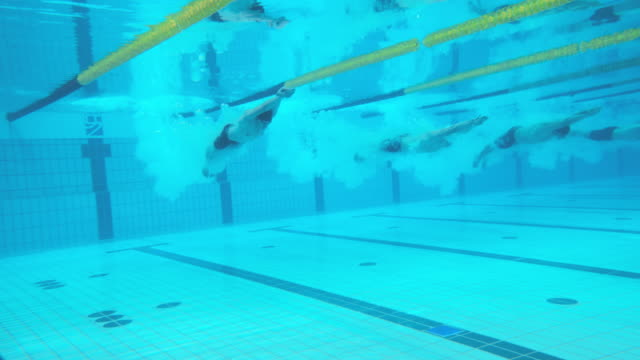 underwater view of male swimmers diving in and swimming in a front crawl competition - swimming cap stock videos and b-roll footage