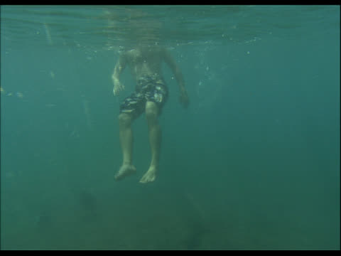 underwater view of person treading water near surface - see other clips from this shoot 1158 stock videos and b-roll footage