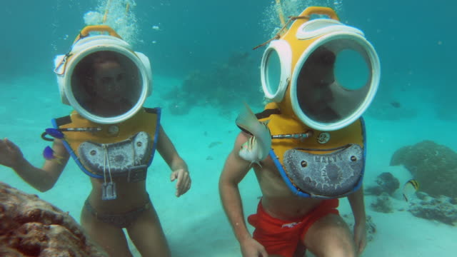 underwater view of scuba diving with a diving helmet in moorea tropical island with fish and stingrays. - stingray stock videos and b-roll footage