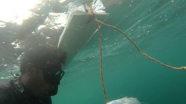 vídeos de stock e filmes b-roll de underwater view of spear fisherman hunting for prey - pacific ocean