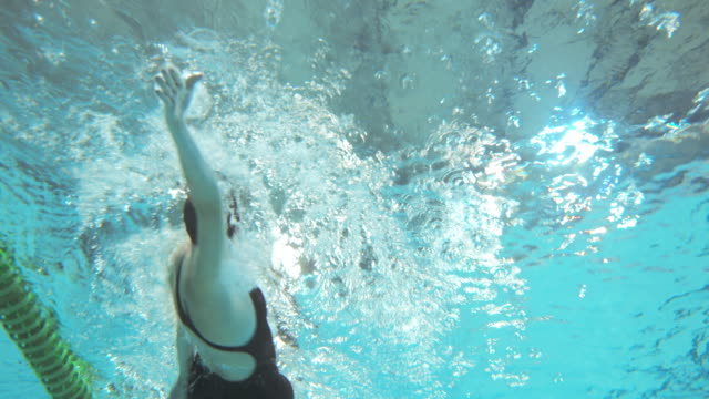 underwater view of swimmers at female backstroke style competition - backstroke stock videos & royalty-free footage