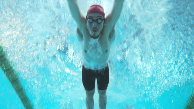 Underwater view of swimmers at male butterfly style competition
