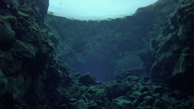 underwater views of very clear waters at þingvellir - süßwasser stock-videos und b-roll-filmmaterial