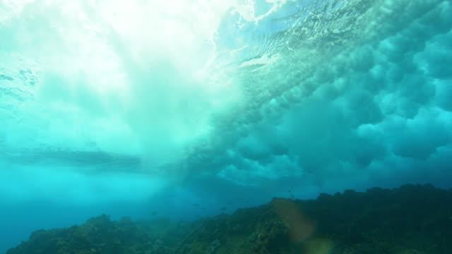 Underwater WS wave sweeps over reef