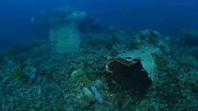 vidéos et rushes de épave de hydravion wwii sous-marine dans les récifs coralliens - épave