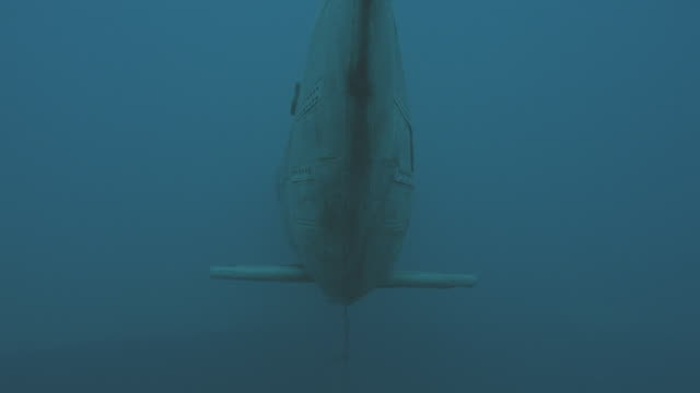 underwater-torpedo launched 2 takes/2 angles, and 1 take with torpedo hatch open - torpedo stock videos & royalty-free footage