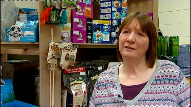 Dogs bowls on shelf Cat food and Dog coats on display Judith Falla interview SOT Reporter to camera London INT Trader looking at screens at desk...