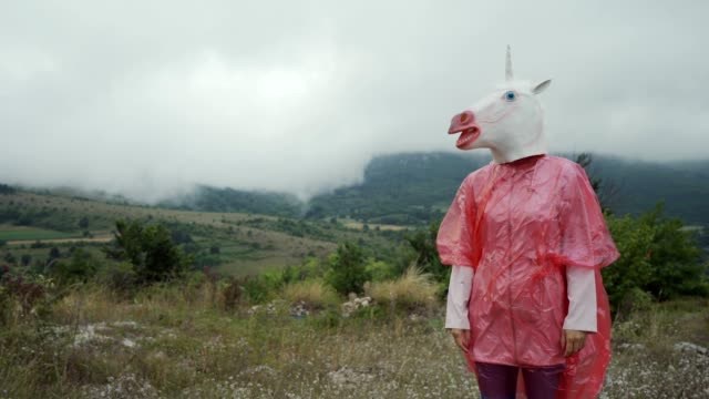 unicorn in a raincoat - drongo stock videos & royalty-free footage