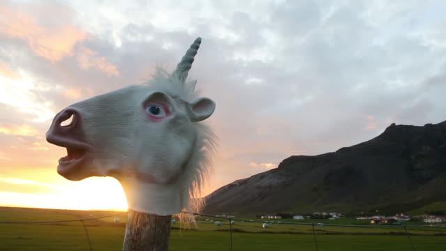 Unicorn Mask Hanging on Fence in Iceland at Sunset