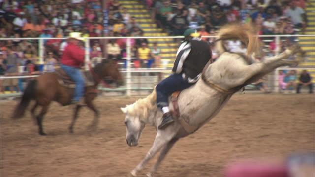 hd *unidentifiable inmate riding bucking bronco horse holding on to rigging handle with both hands - bocksprång bildbanksvideor och videomaterial från bakom kulisserna