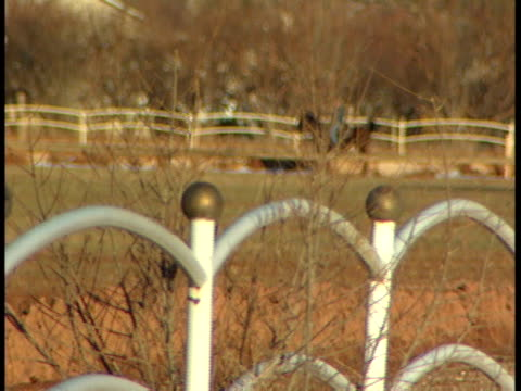 unidentifiable male riding horse on large field w/ white fence fg cascading rows of houses bg could be farm or ranch scene horse back riding... - horse family video stock e b–roll
