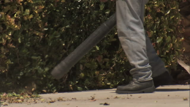 Unidentifiable male w/ leaf blower blowing leaves off pavement by bush