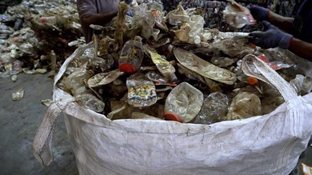 vídeos de stock, filmes e b-roll de trabalhadores não identificados selecionando garrafas plásticas transparentes esmagadas para o processo em um centro de reciclagem. - grupo grande de objetos
