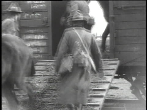 uniformed wwi soldiers unloading horses from freight cars / versailles france - anno 1918 video stock e b–roll