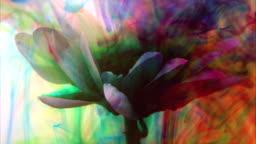 Unique flower background with vibrant colors