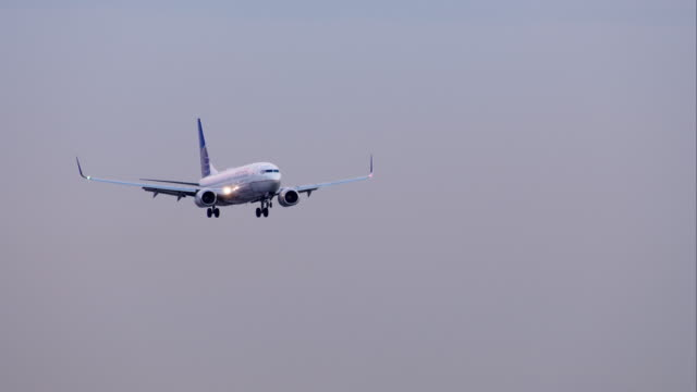 united airlines boeing 737 landing at los angeles international airport, late afternoon. - landing touching down stock videos & royalty-free footage