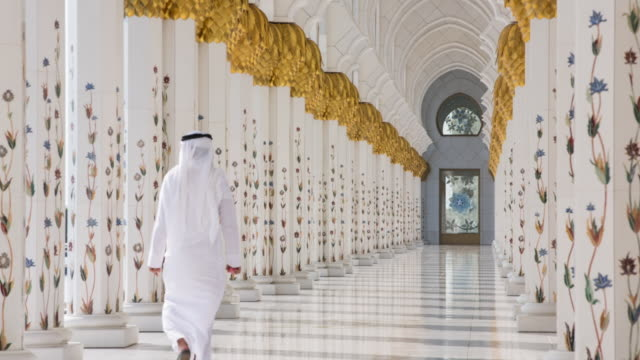united arab emirates, abu dhabi, sheikh zayed grand mosque - moschea video stock e b–roll
