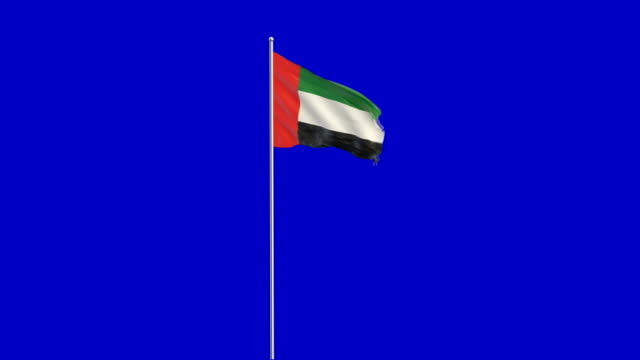 united arab emirates flag rising - flag stock videos & royalty-free footage