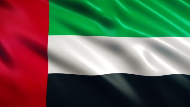 vídeos de stock, filmes e b-roll de bandeira de united arab emirates - flag