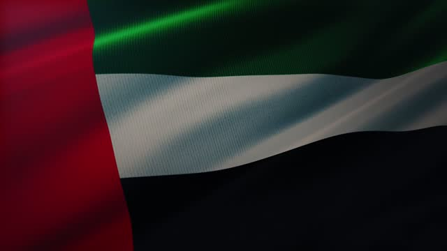 4k united arab emirates flag waving in the wind with highly detailed fabric texture - money politics stock videos & royalty-free footage