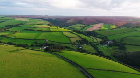 united kingdom, devon, exmoor national park, aerial view over the moors and farmland - devon stock videos & royalty-free footage