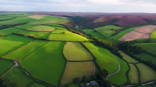 united kingdom, devon, exmoor national park, aerial view over the moors and farmland - 英格蘭 個影片檔及 b 捲影像