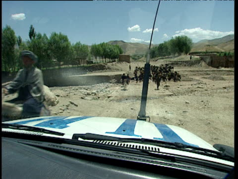 united nations 4x4 travels over barren terrain until blocked by herd of cattle afghanistan - 牛車点の映像素材/bロール