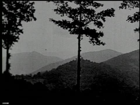 vídeos de stock e filmes b-roll de [united states] - 11 of 12 - veja outros clipes desta filmagem 2306