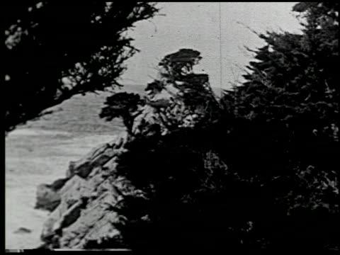 vídeos de stock e filmes b-roll de [united states] - 9 of 12 - veja outros clipes desta filmagem 2306