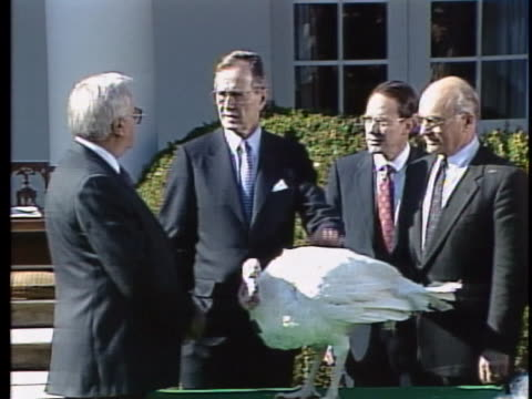 united states president george h.w. bush pets the national thanksgiving turkey. - thanksgiving politics stock videos & royalty-free footage