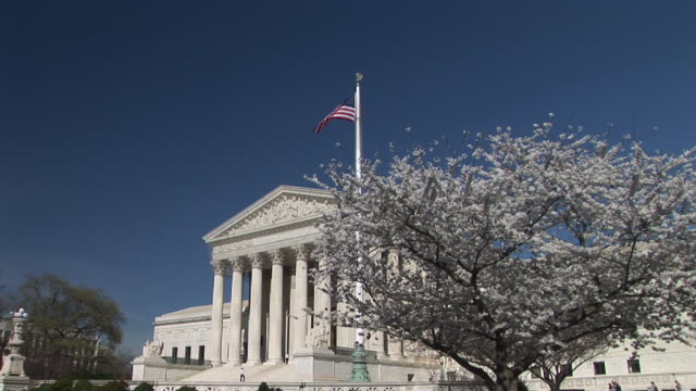 vidéos et rushes de ws, united states supreme court building and cherry blossom, washington, dc, washington, usa - fronton