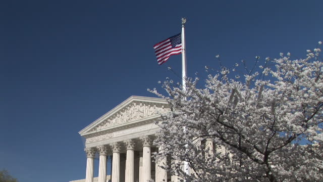 vidéos et rushes de ms, united states supreme court building and cherry blossom, washington, dc, washington, usa - fronton