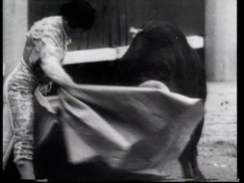 a bull knocks matador antonio vasquez down in a bull fight on name day in madrid - bullfighter stock videos & royalty-free footage