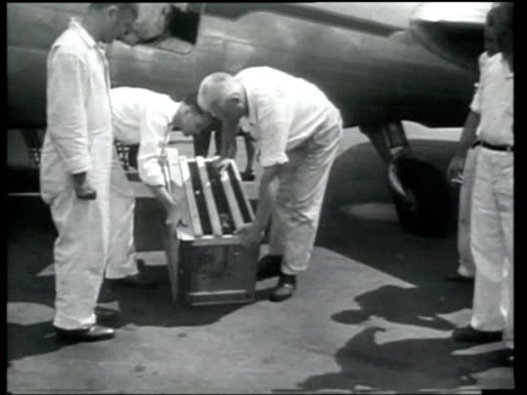 vídeos de stock, filmes e b-roll de crated dog is carried off a plane and then hugged by a military widow. - widow