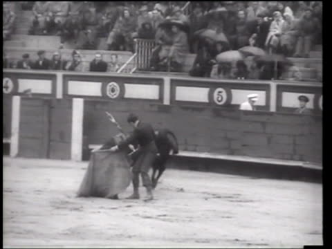 charity bullfight in spain - newsreel stock videos & royalty-free footage