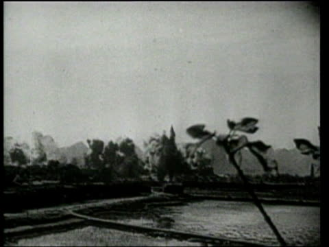 universal newsreel. chinese refugees flee, as chinese soldiers prepare for combat against japanese invaders. - 1939 stock-videos und b-roll-filmmaterial
