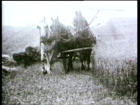 how we lived agricultural equipment 1920s - threshing stock videos & royalty-free footage