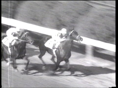native dancer wins the 77th preakness in a very close race - ニュース映画点の映像素材/bロール
