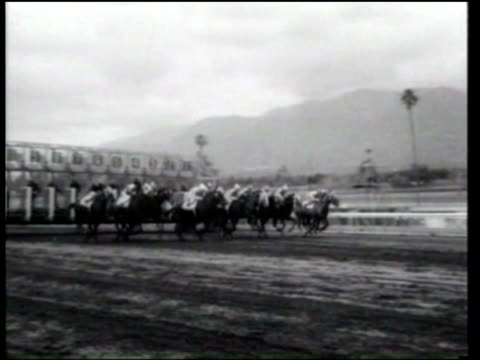 spinney wins the santa anita maturity on a muddy track - ニュース映画点の映像素材/bロール