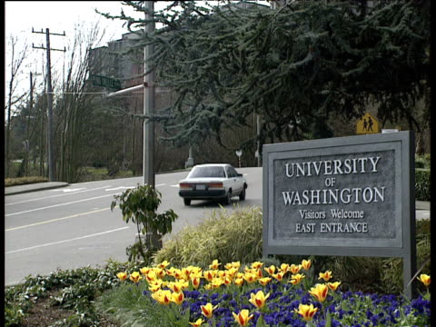 stockvideo's en b-roll-footage met university of washington sign by tulips next to road - universiteit van washington