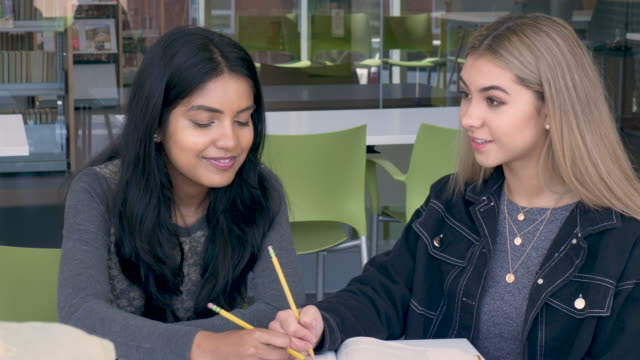 University Students Doing schoolwork Together
