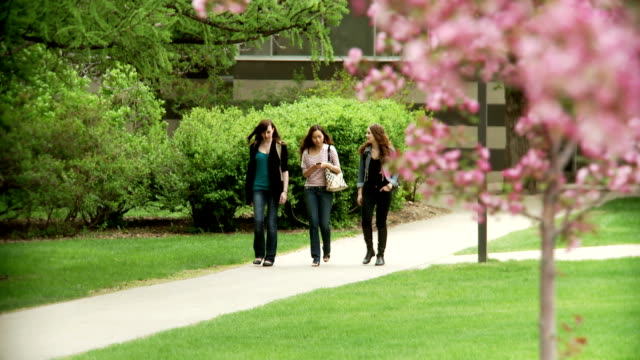 University students walk and chat on campus