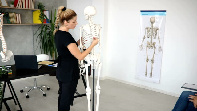 vídeos de stock e filmes b-roll de university teacher leading a class about human skeleton - acupuntura
