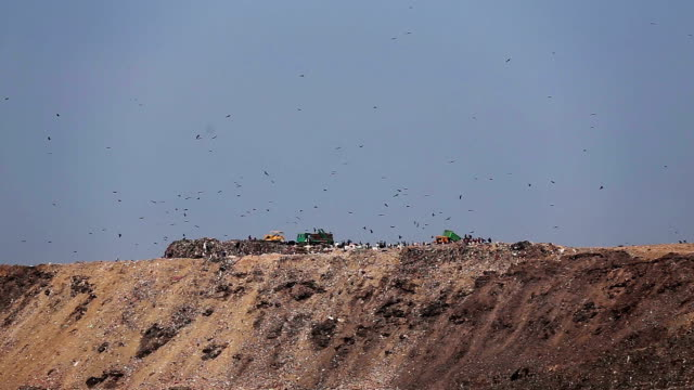 Unloading Garbage Truck On hill land