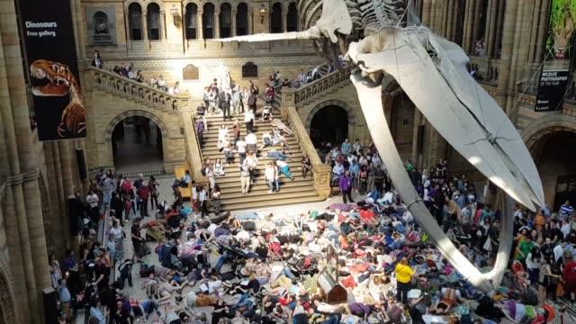 vídeos y material grabado en eventos de stock de unos 100 manifestantes se hicieron los muertos el lunes bajo el esqueleto de una ballena azul que cuelga en el museo de historia natural de londres... - cetáceo