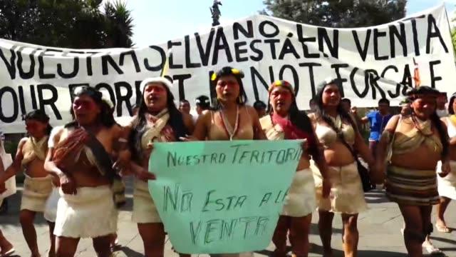 unos 30 indígenas waorani se manifestaron pacíficamente este martes frente a la sede del gobierno de ecuador para defender un fallo de primera... - etnia stock videos and b-roll footage